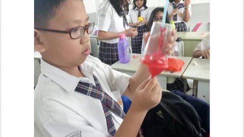 Mempelajari Cara Kerja Paru-paru dengan Membuat Alat Peraga