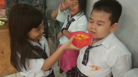 """Grade 1 SD """"What can you smell?"""""""