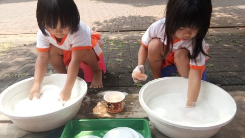 Washing Plate
